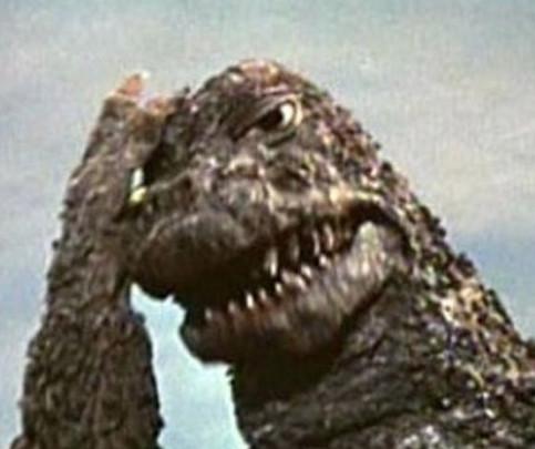 Poor Godzilla